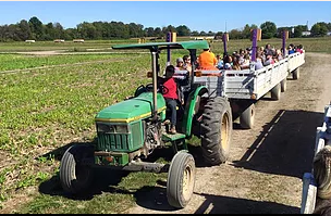 tractor pulling a hayride of people through a field